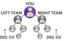 team-value